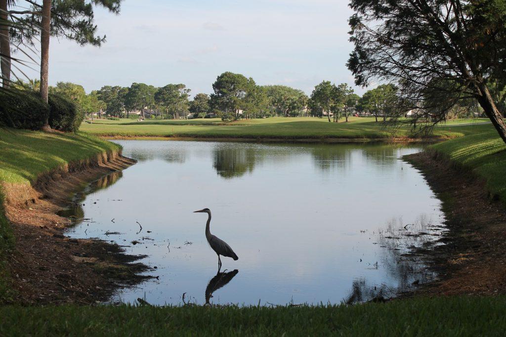 Ponte Vedra Beach Golf Florida