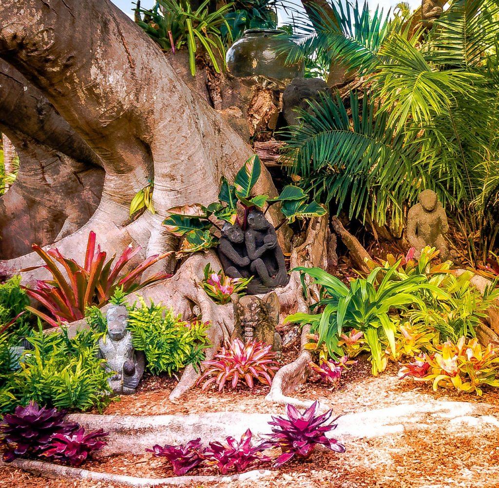 Bonita Springs na Floridě – tropické rostliny a stromy na Floridě
